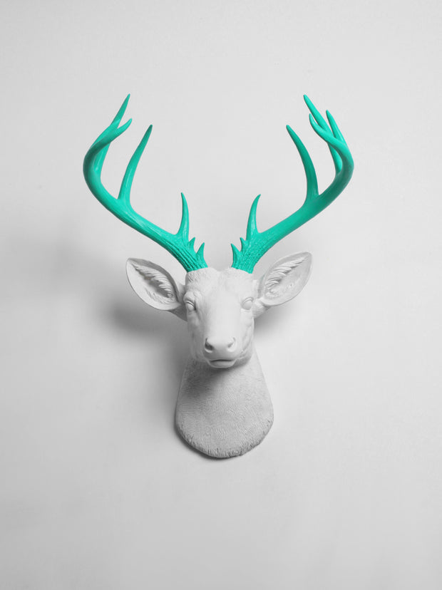 White Faux Deer Head with Turquoise Resin Deer Antlers. XL Oleg with Turquoise Antlers
