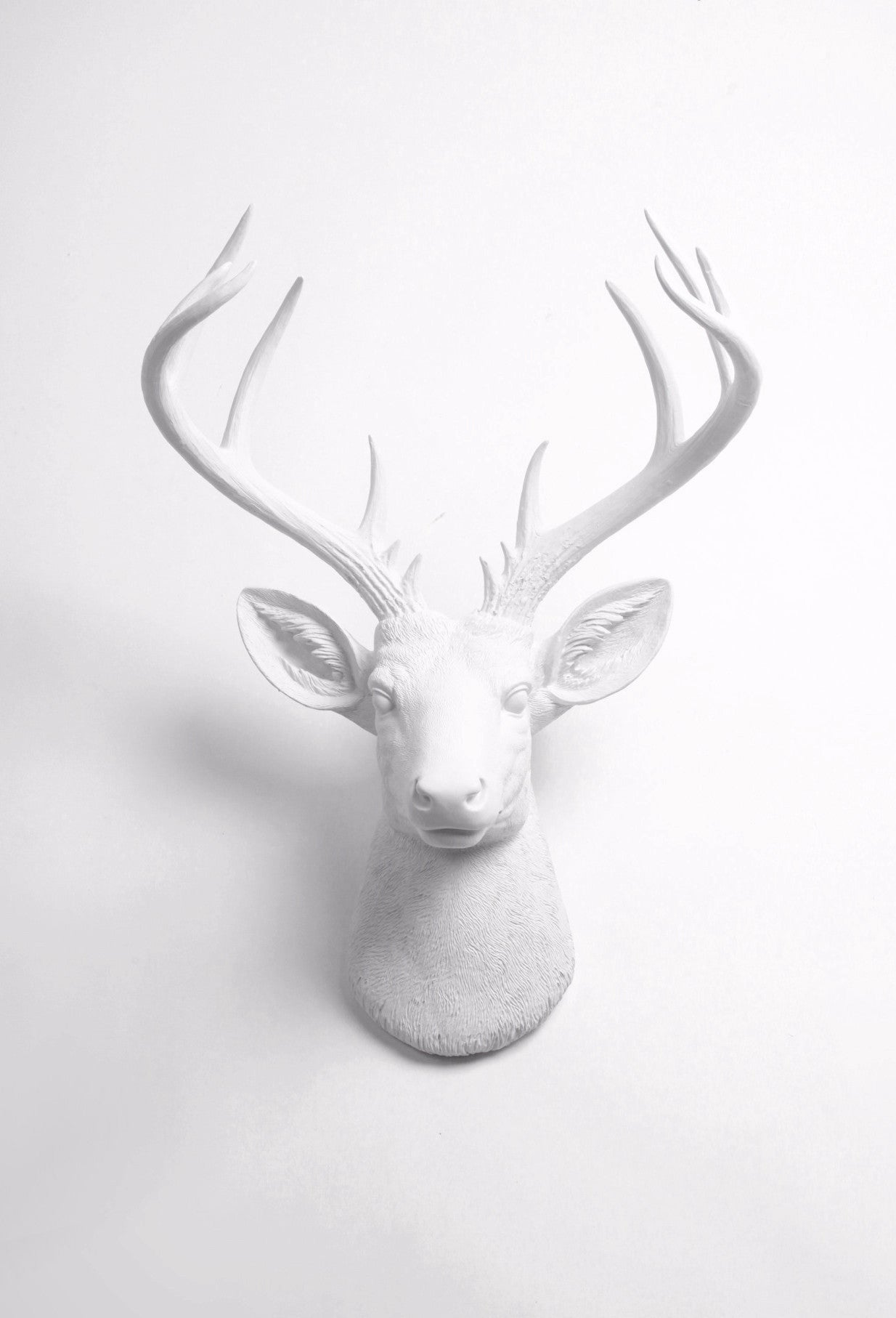 Superb Large Fake Taxidermy White Deer Head Wall Mount, The XL Templeton
