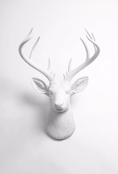 Large White Faux Deer Head Wall Mount, The XL Templeton
