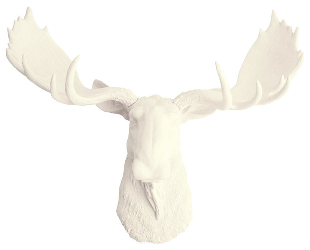 antique-white resin faux moose head wall hanging by WhiteFauxTaxidermy