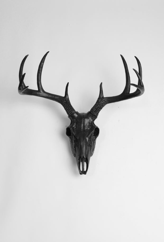 faux deer skull wall mount in black.  Black resin animal skull decoration