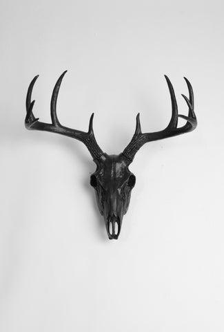 Black Faux Deer Skull | Stag Skeleton | Black Resin Animal Skull