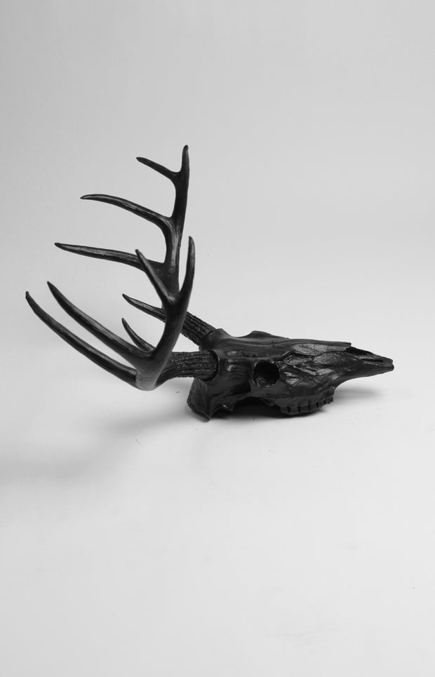 Black Faux Deer Skull,  Black Resin Stag & Antlers Animal Skull