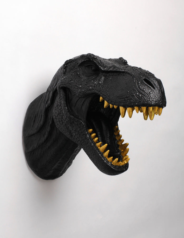 The Rufus in Black W/ Gold Teeth | Faux Taxidermy T Rex Dinosaur Head