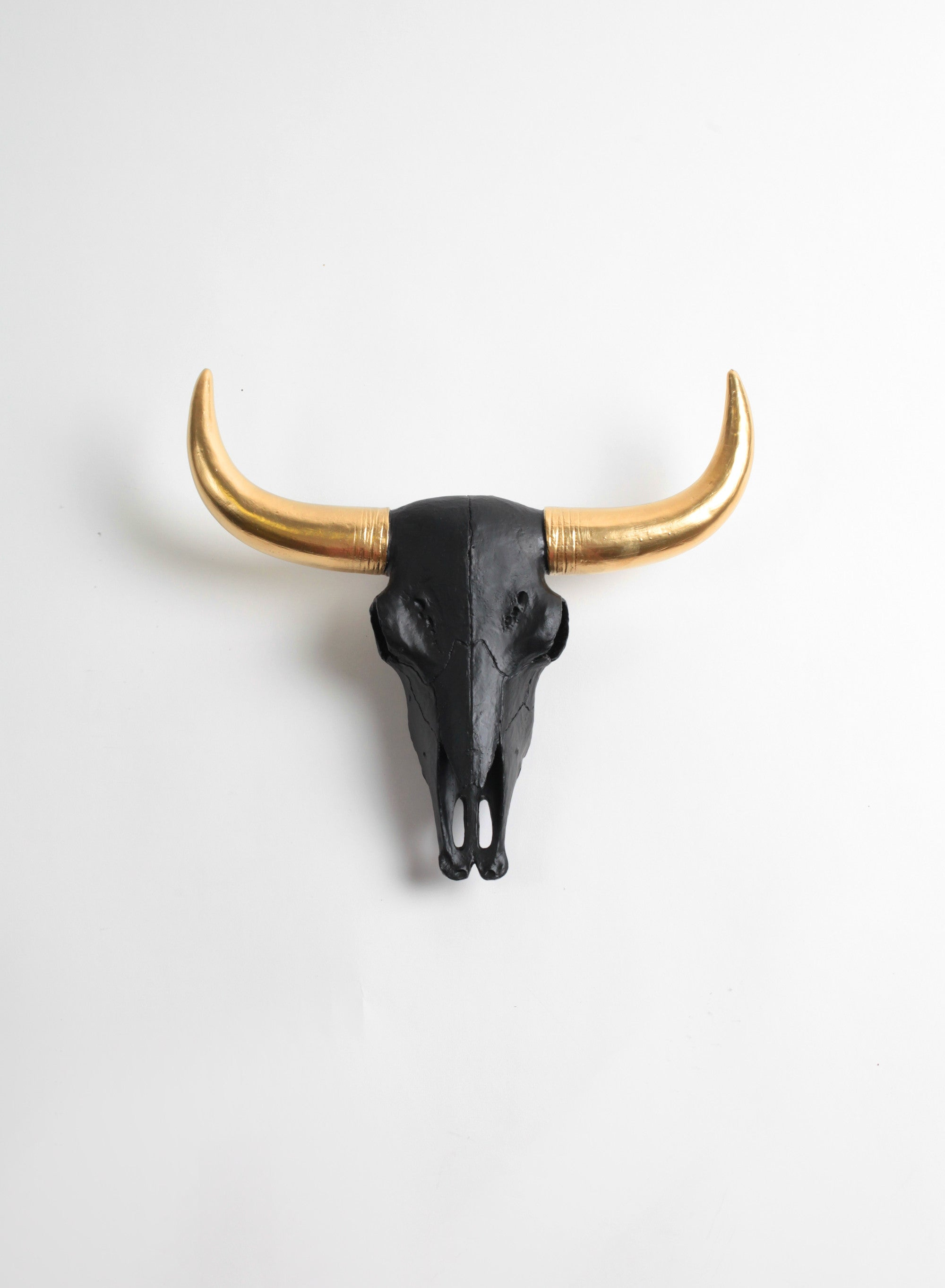 The Bison Skull | Black W/ Gold Horn Skull | Faux Taxidermy