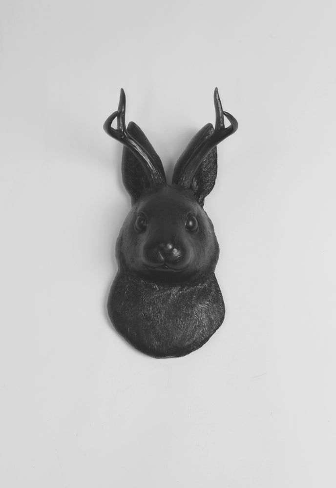 The Corduroy in Black  | Jackalope Head | Faux Taxidermy | Black Resin