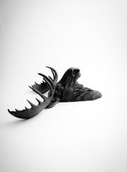 The Leonard | Moose Head | Faux Taxidermy | Black Resin