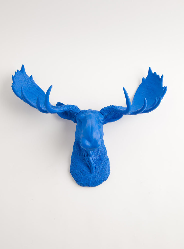 large Faux Blue Moose Head Wall Mount Decor, 18.5""