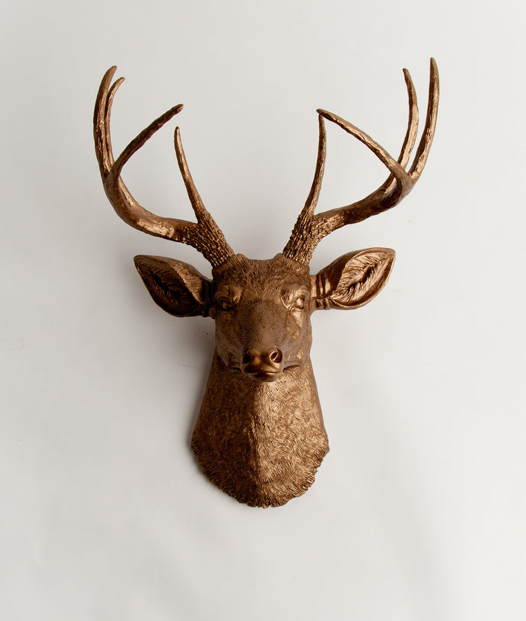 The Bennett, Faux Taxidermy Stag Deer Head, Bronze Resin