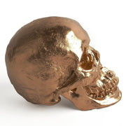 The Fitz in Bronze | Trendy Victorian Gothic Human Skull Art