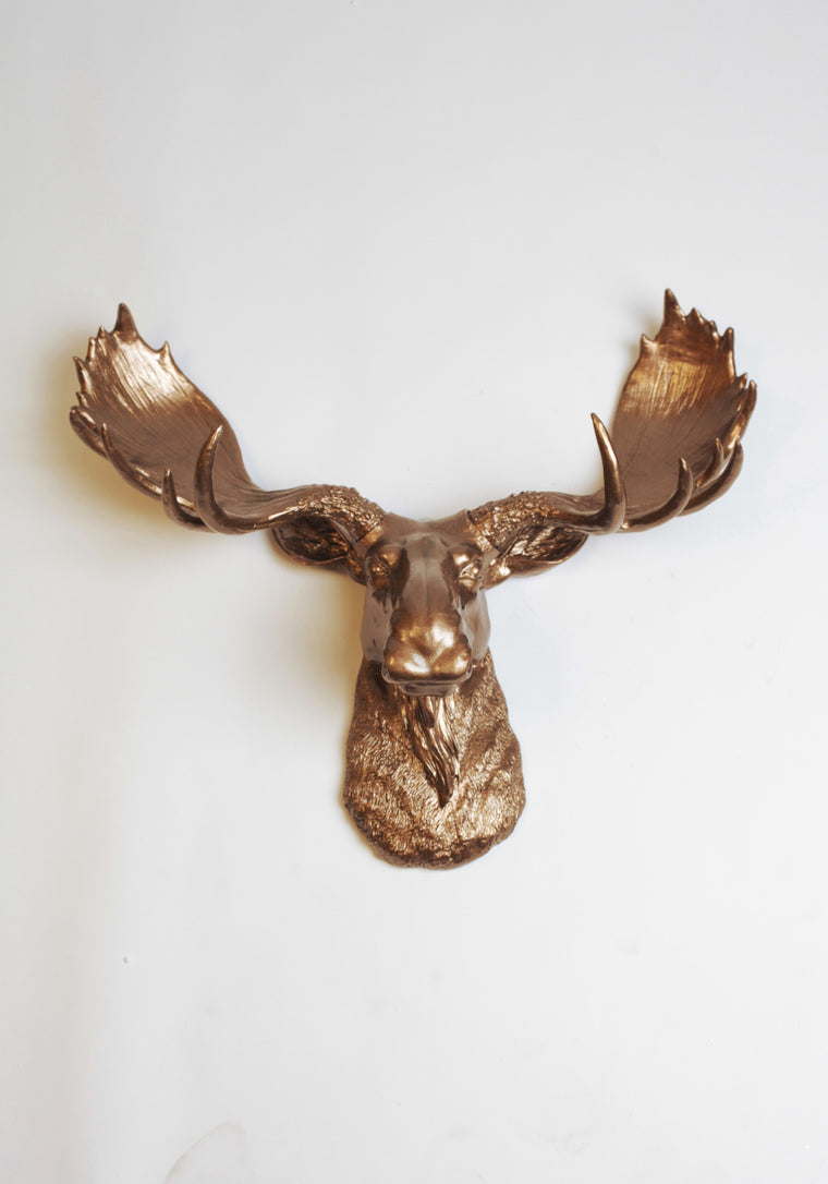 White Faux Moose Head With Bronze Antlers The Boston