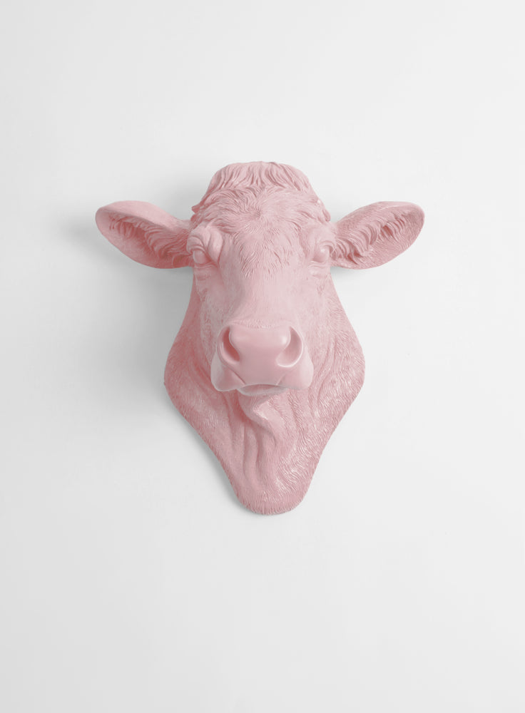 The Bessie in Cameo Pink, Cow Head Wall Decor