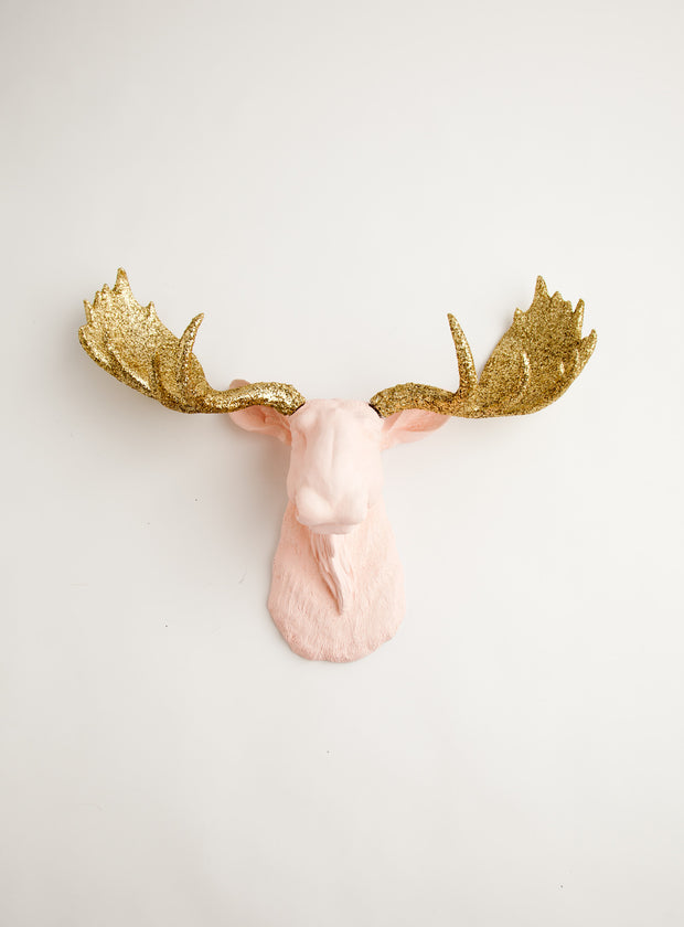Cameo Pink & Gold Glitter Moose Head Mount