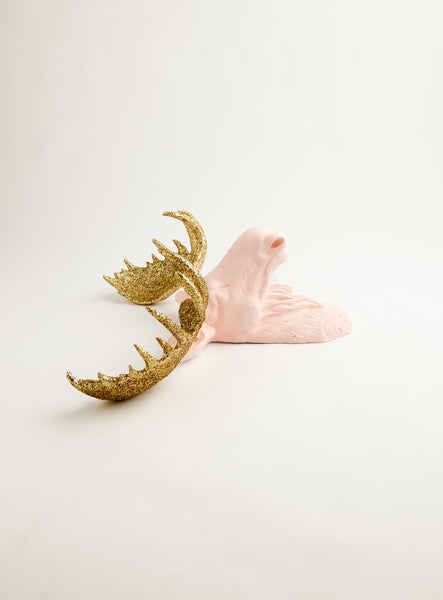 The Eva | Moose Head | Faux Taxidermy | Cameo Pink Resin w/ Gold Glitter Antlers