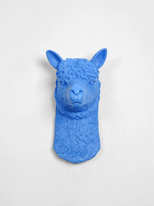 Blue Llama Wall art mount