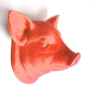 The Hamlet in Coral | Modern Farmhouse Home Decor, Faux Pig Head Wall Mount