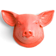 coral orange pig head home decor kitchen farmhouse wall hanging