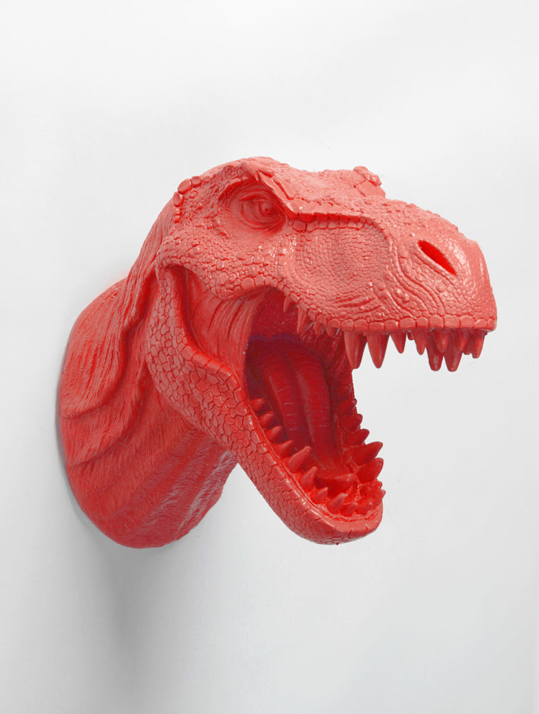 T rex head dinosaur wall mount in Coral