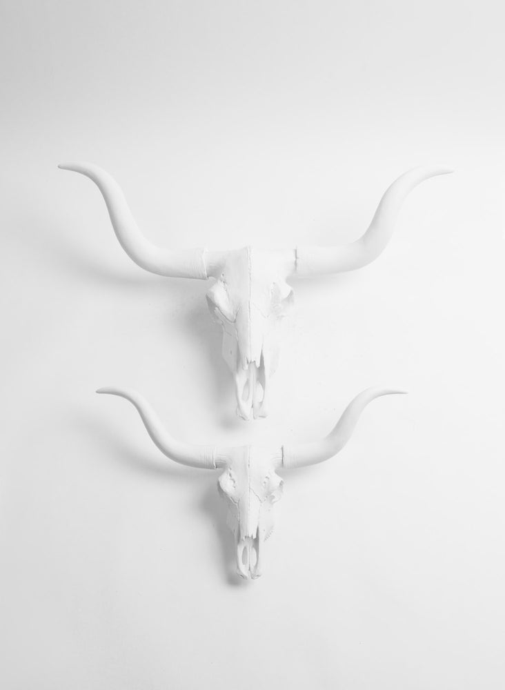 The Mini Savannah, White Faux Longhorn Cow Skull Decor W/ Gold Horns