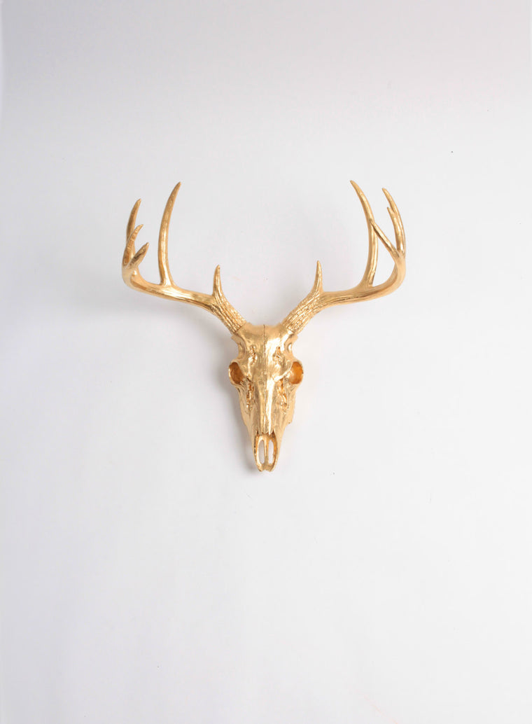 Mini Gold Faux Deer Skull | Stag Skeleton | Gold Resin