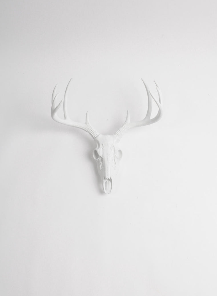 Mini White Faux Deer Skull | Stag Skeleton | White Resin