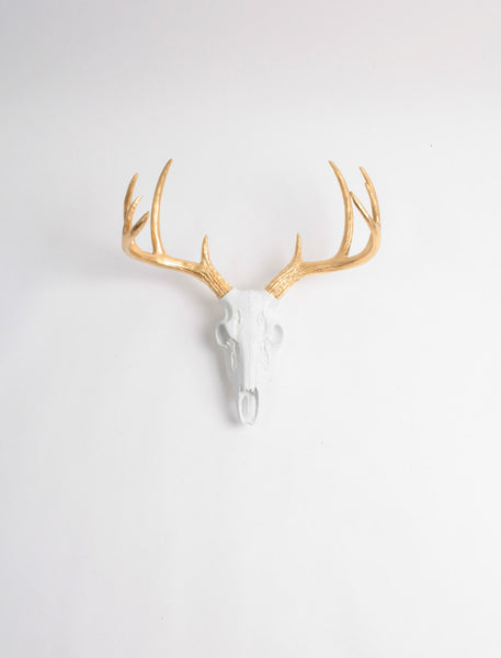 Mini Faux Deer Skull mount in White & Gold Antlers