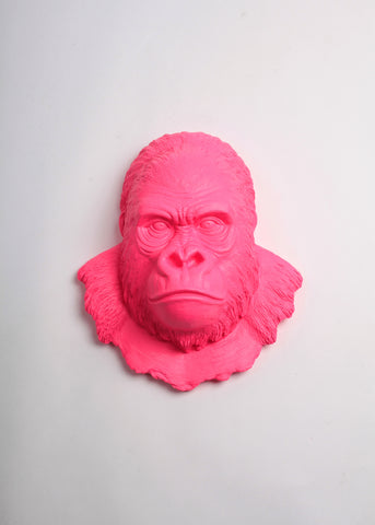 The Mambo in Fuchsia, Gorilla Head Wall Mount