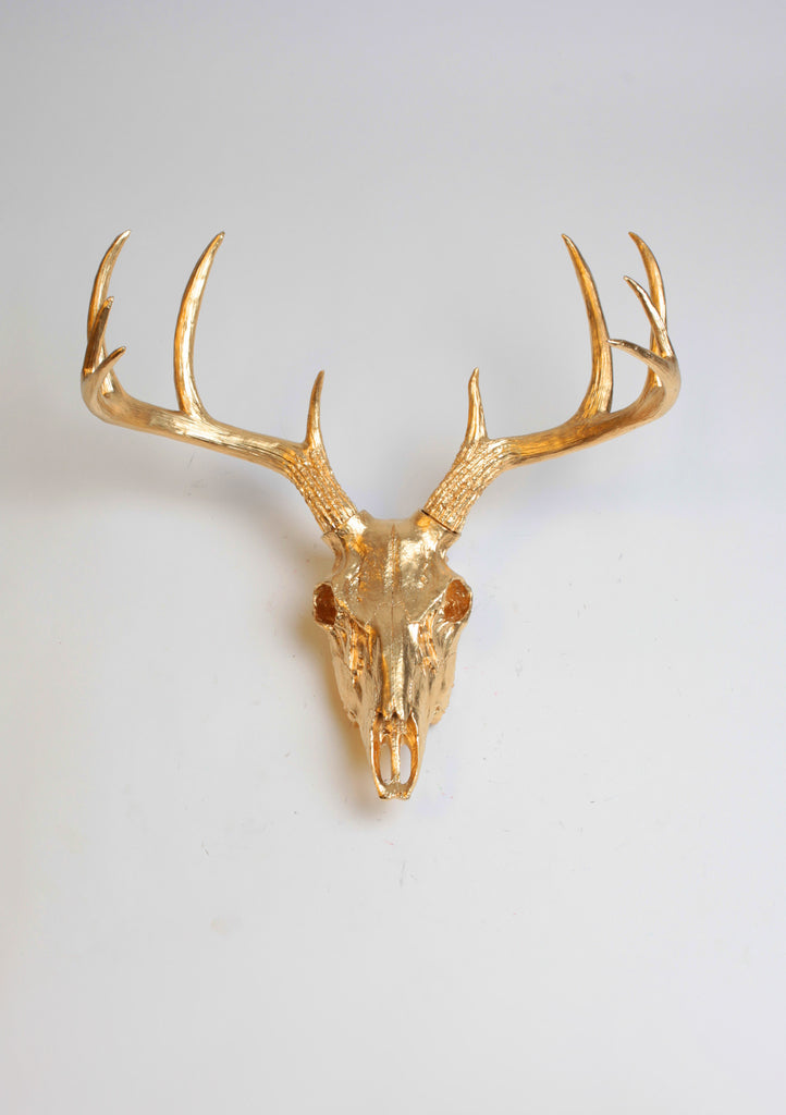 Gold Deer Skull Wall Mount 21 Quot Tall 19 5 Quot Wide White