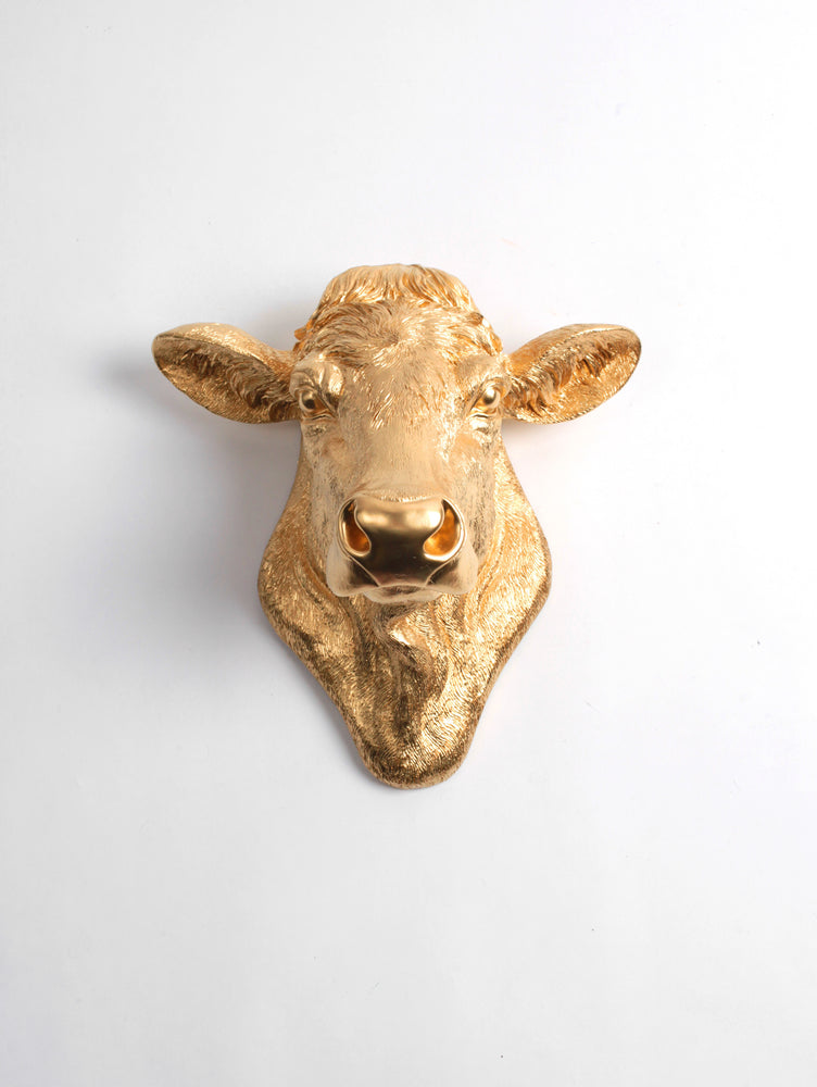 The Bessie in Gold, Cow Head Wall Decor