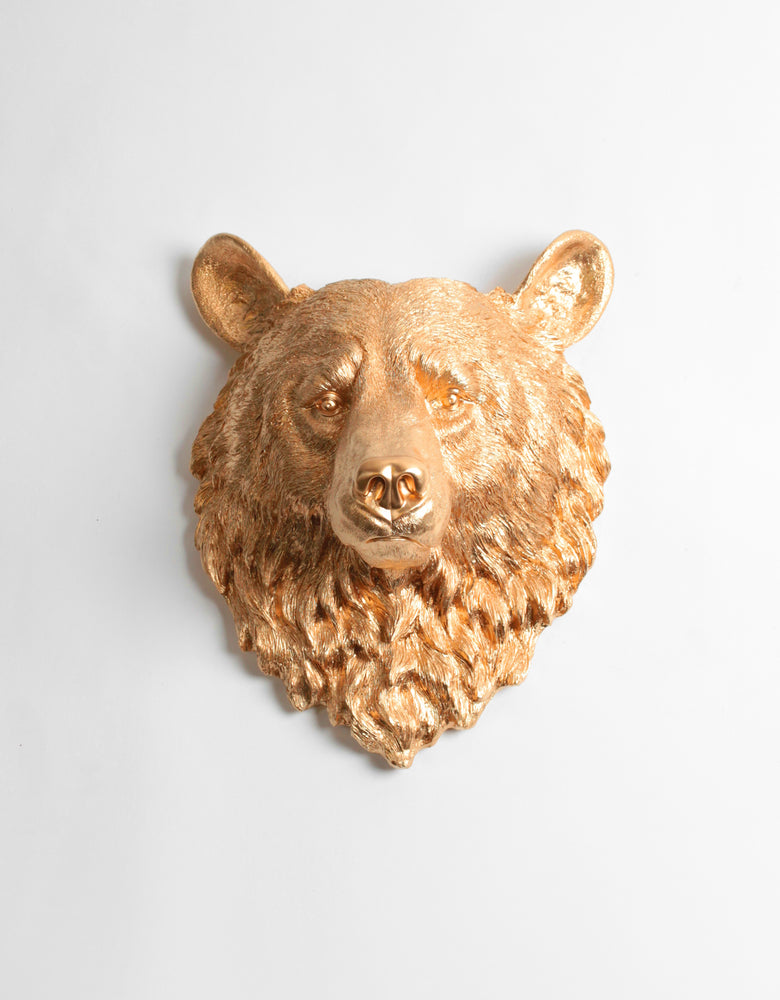 The Honey | Bear Head | Faux Taxidermy | Gold Resin