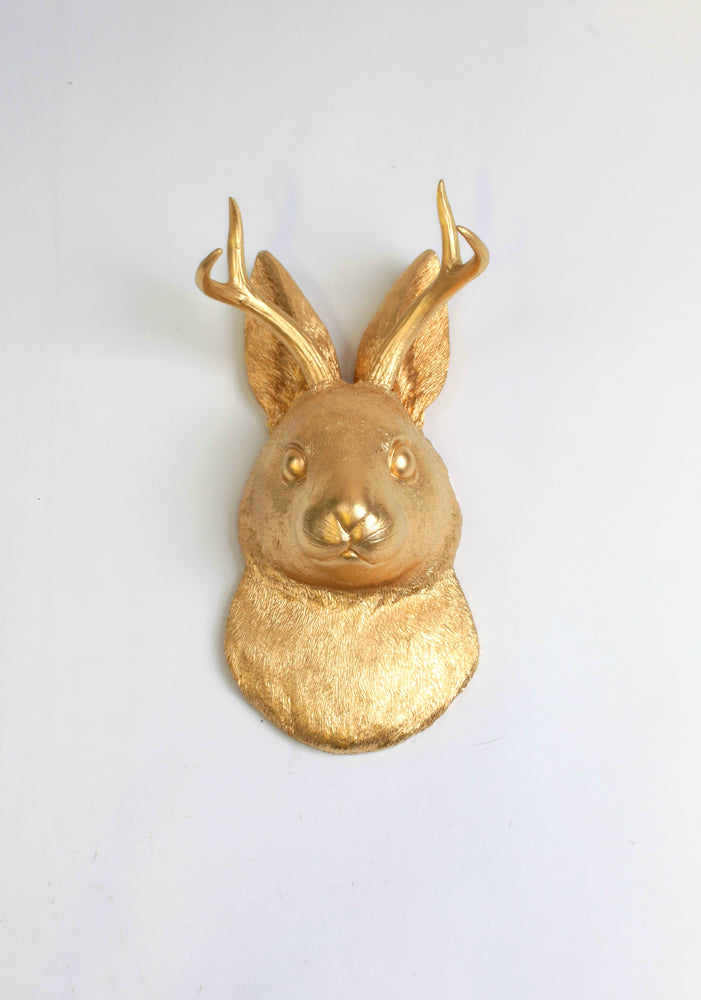 The Corduroy in Gold  | Jackalope Head | Faux Taxidermy | Gold Resin