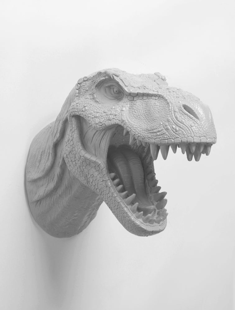 The Bronson in Gray Dinosaur T Rex Head Wall Mount