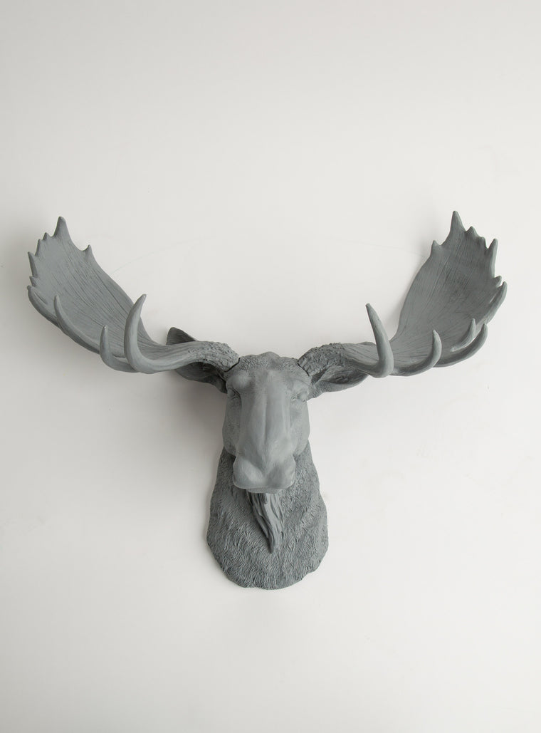 The Wellington | Moose Head | Faux Taxidermy | Gray Resin