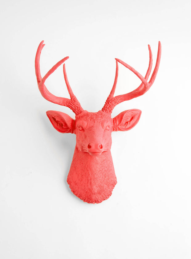 The Molly, Coral Stag Deer Head Wall Art, Faux Taxidermy Stag