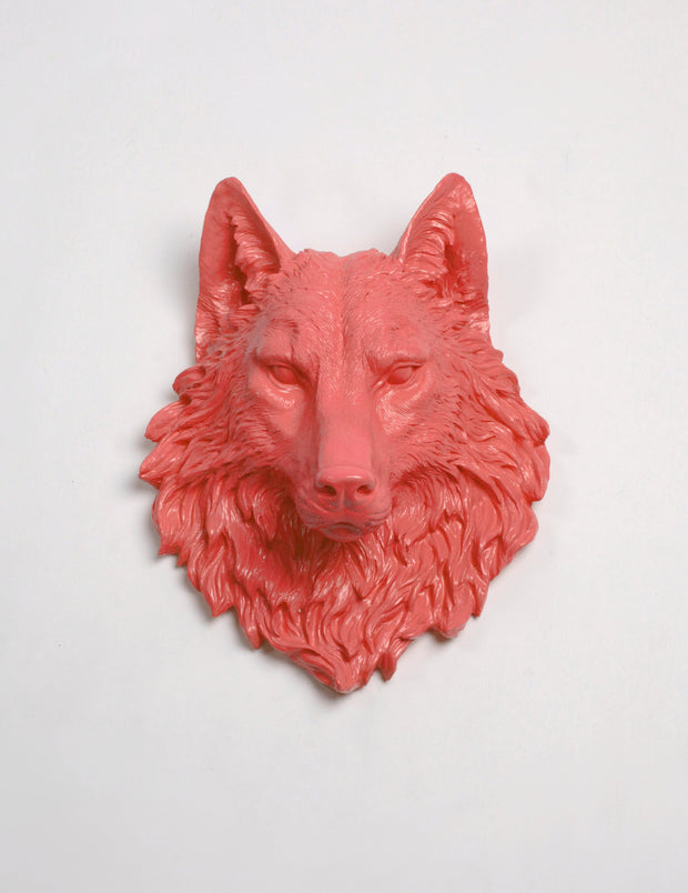 The Lincoln in Coral, Faux Taxidermy Wolf Head Wall Decor