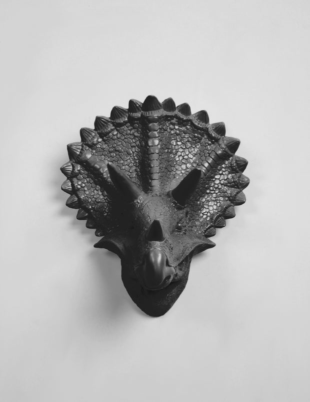 Black Triceratops Dinosaur Head Decor Forms
