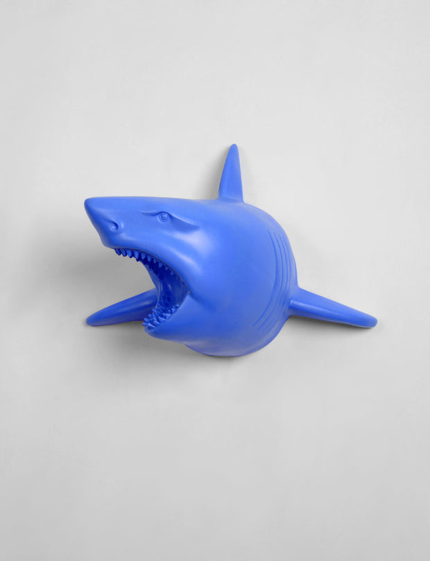The Lewie in Cobalt - Cobalt Resin Shark Head- Shark Resin Cobalt Faux Taxidermy- Chic & Trendy Fish Mount