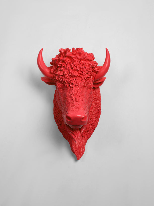 The Mellby in Coral | Bison Head | Faux Taxidermy | Coral Resin
