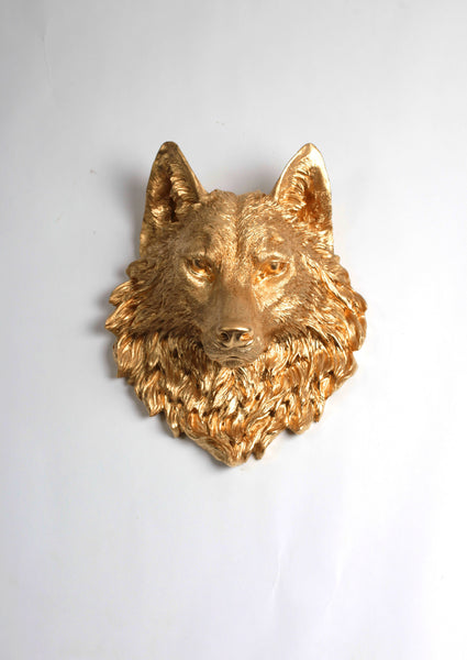 The Dexter Large Gold Faux Wolf Head Wall Mount White