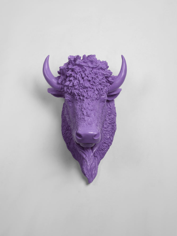 The Mellby in Lavender | Bison Head | Faux Taxidermy | Lavender Resin