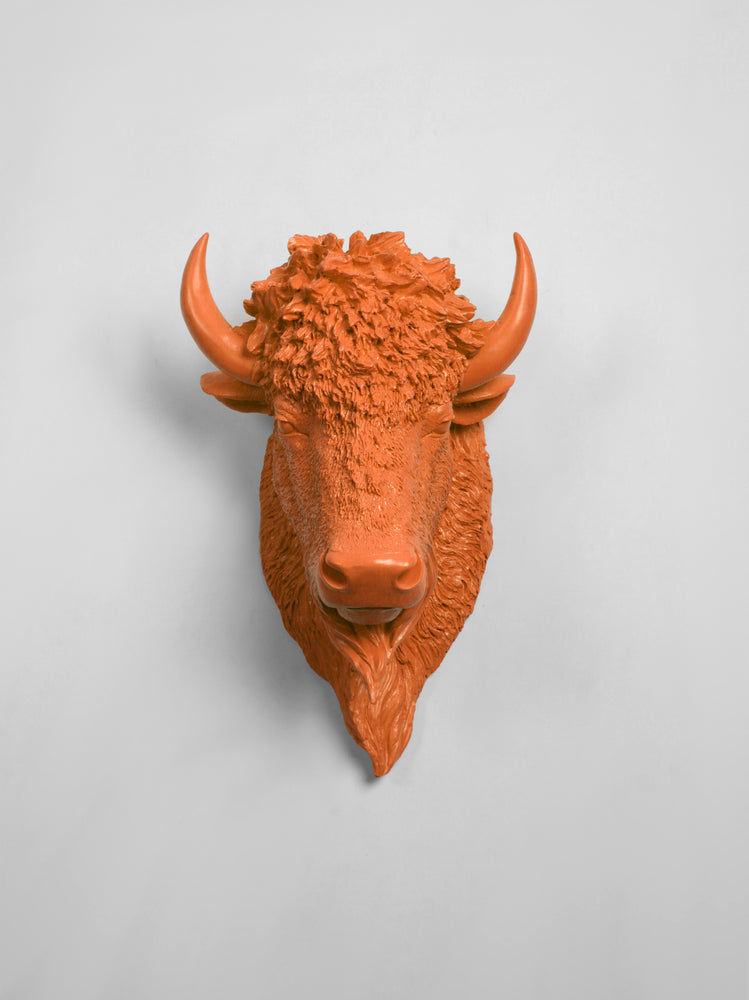 The Mellby in Tangerine | Bison Head | Faux Taxidermy | Tangerine Resin