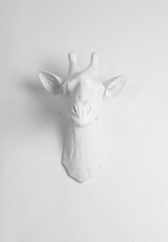 The Geronimo | Large Faux Giraffe Head | Faux Taxidermy | White Resin