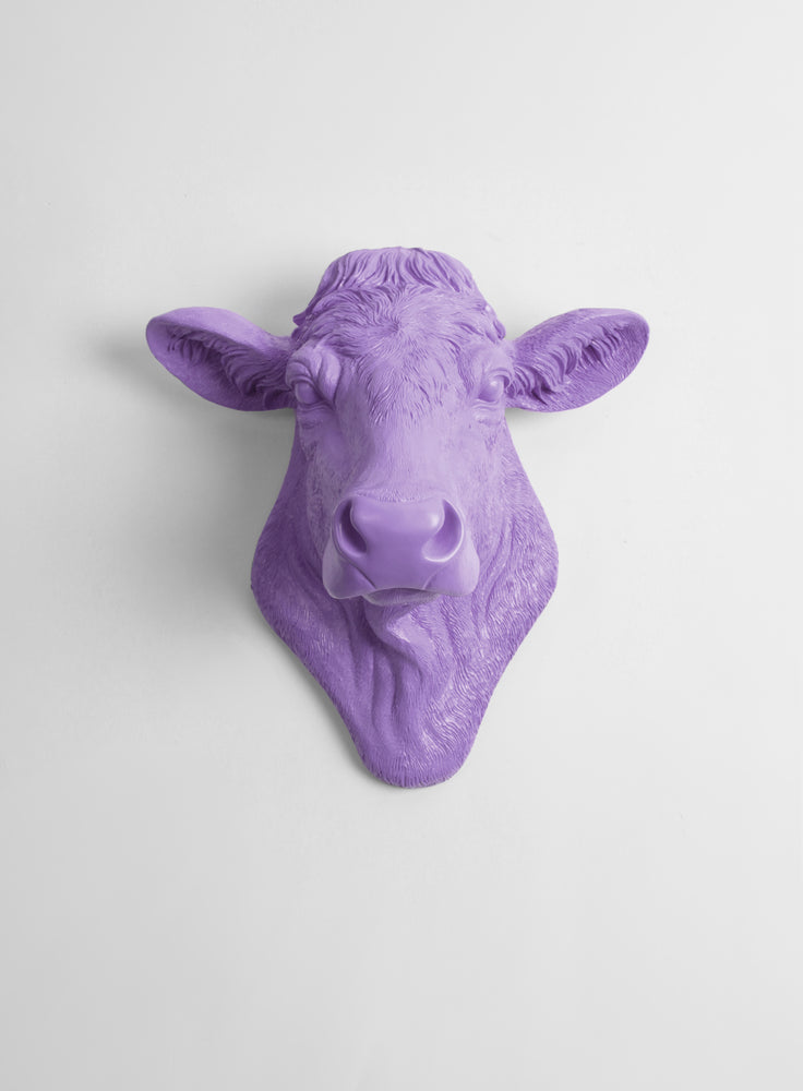 The Bessie in Lavender, Cow Head Wall Decor