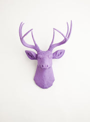 Lavender purple wall decor deer, The Emma. lavender purple faux stag head wall decoration