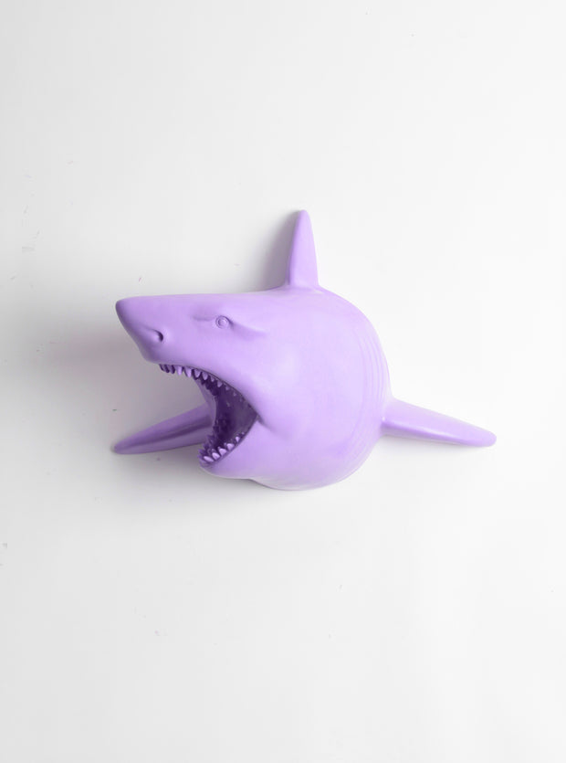 The Lewie in Lavender - Lavender Resin Shark Head- Shark Resin Lavender Faux Taxidermy- Chic & Trendy Fish Mount