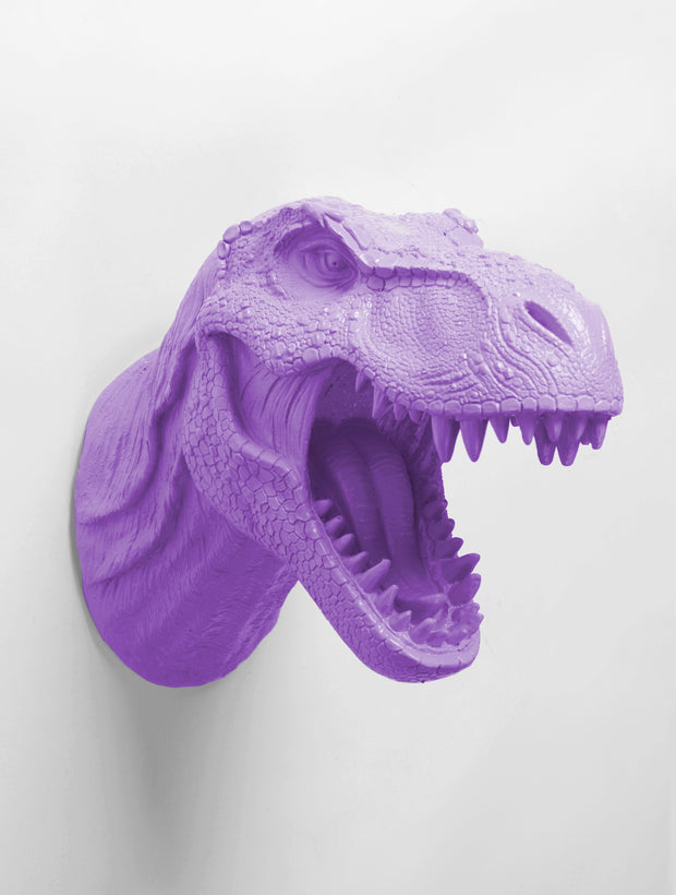 Dinosaur Head  Wall Mount in Violet. Trex Head Fake Taxidermy