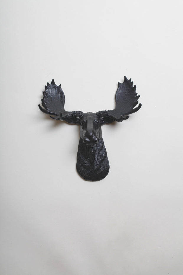 Mini Black Moose Head, The Mini Leonard