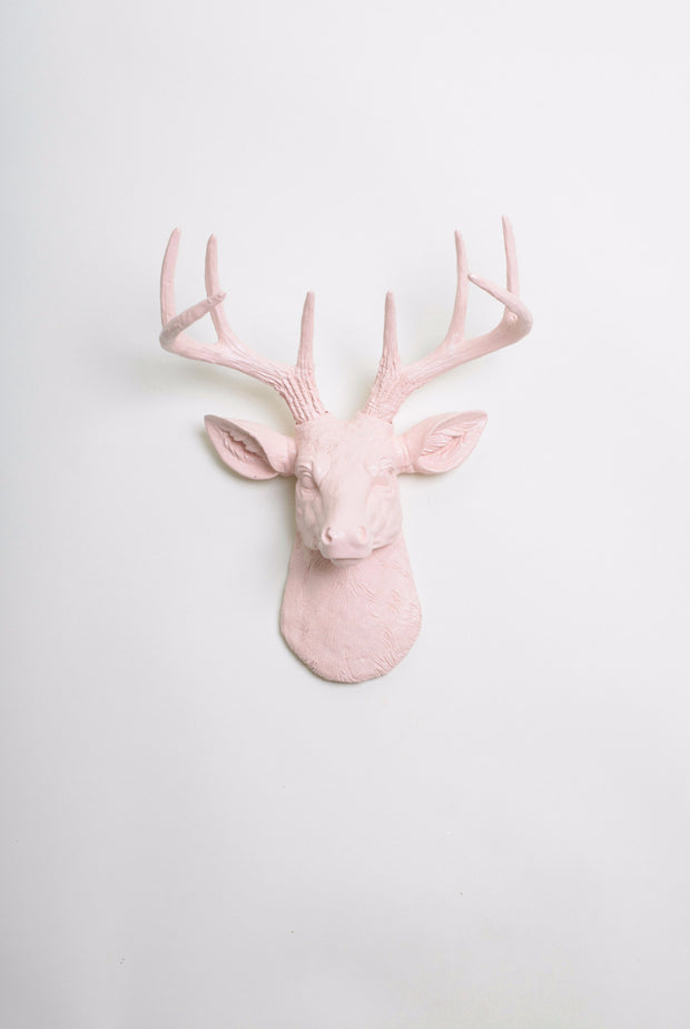 Mini Blush Pink Stag Head Wall Mount. cameo-pink ceramic-like resin mini mounted deer head sculpture wall decor