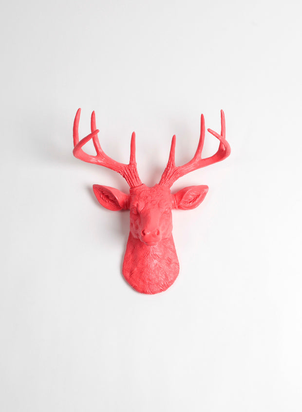The MINI Stella, Mini Deer Head Faux Taxidermy | Coral Resin