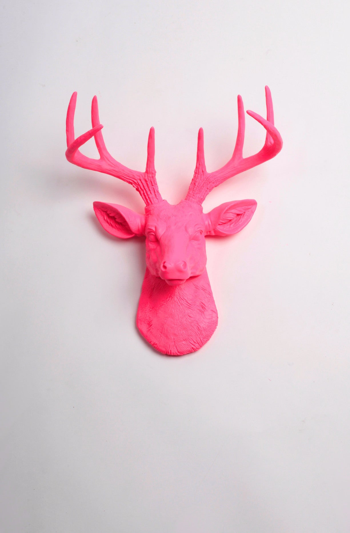 Pink Faux Mini Stag head Wall Mount